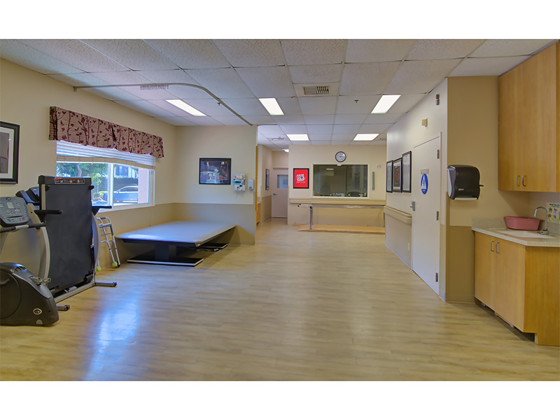 Rehabilitation room with clean wood floors and organized equipment.