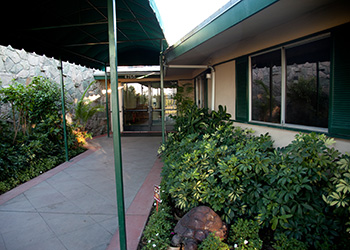 walkway at community care on palm