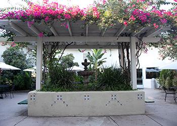 hanging gardens at facility