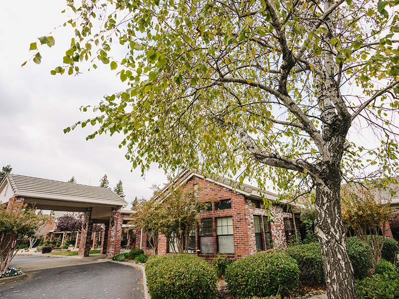 The Entrance to the community with large, mature trees leading up to the covered entrance.