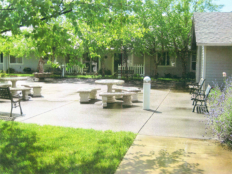 Outdoor patio area with green grass and green trees