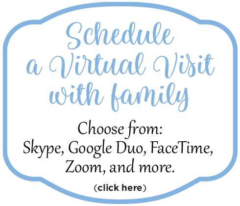 Schedule a virtual visit with family button