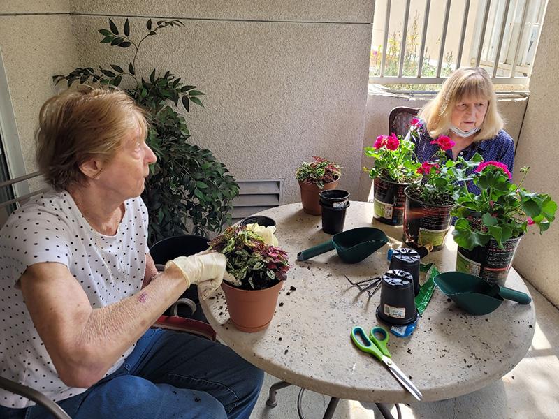 Glen Terra activity gardening
