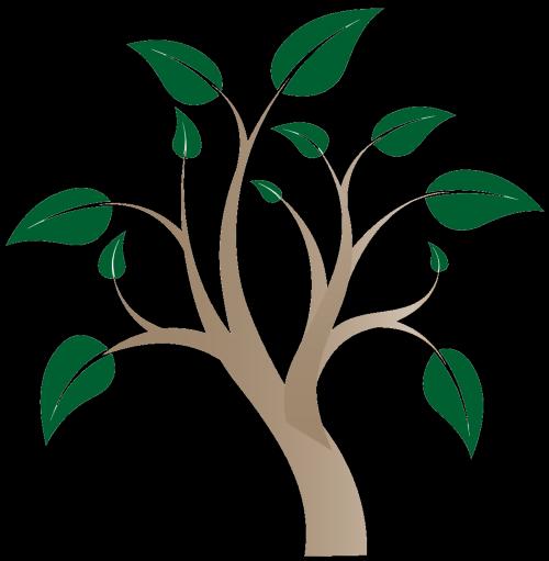 ashbury park logo