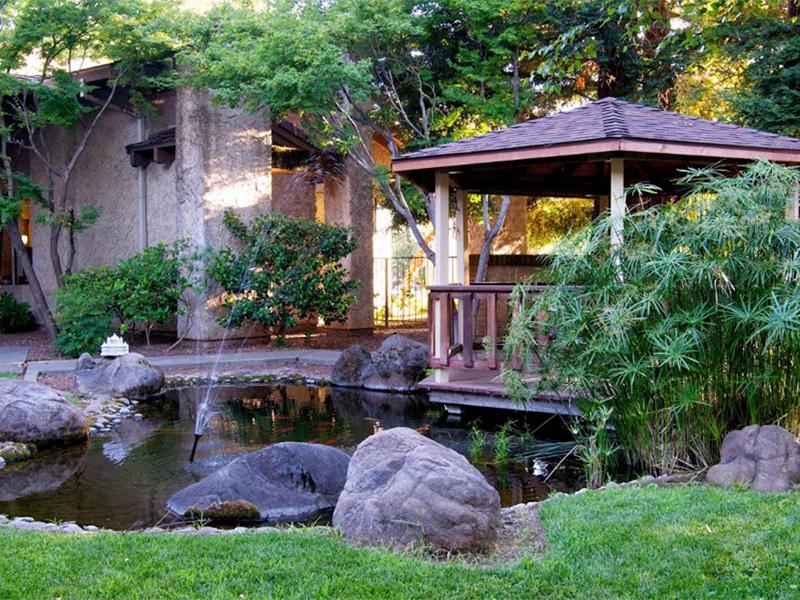 Gazebo in pond area