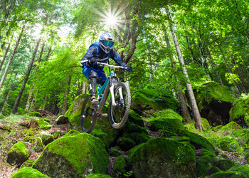 mountain biking through the forest