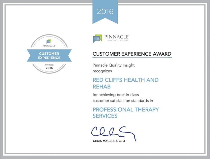 2016 pinnacle award