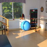 Rehabilitation gym with organized equipment