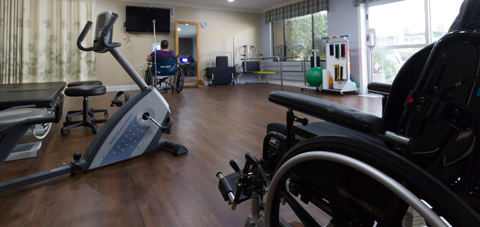 an abundance of new equipment in the therapy room