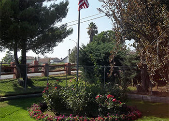 rose garden at Banning Healthcare