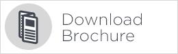 download brochure button white