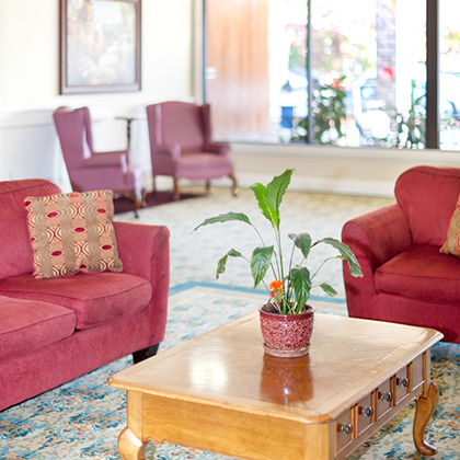 lounge area with plant on the table