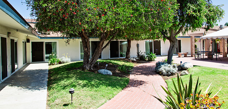 Beautiful patio area with lush trees and walking path
