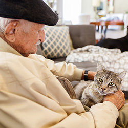 elderly gentleman wearing a cap while petting a fluffy cat on his lap