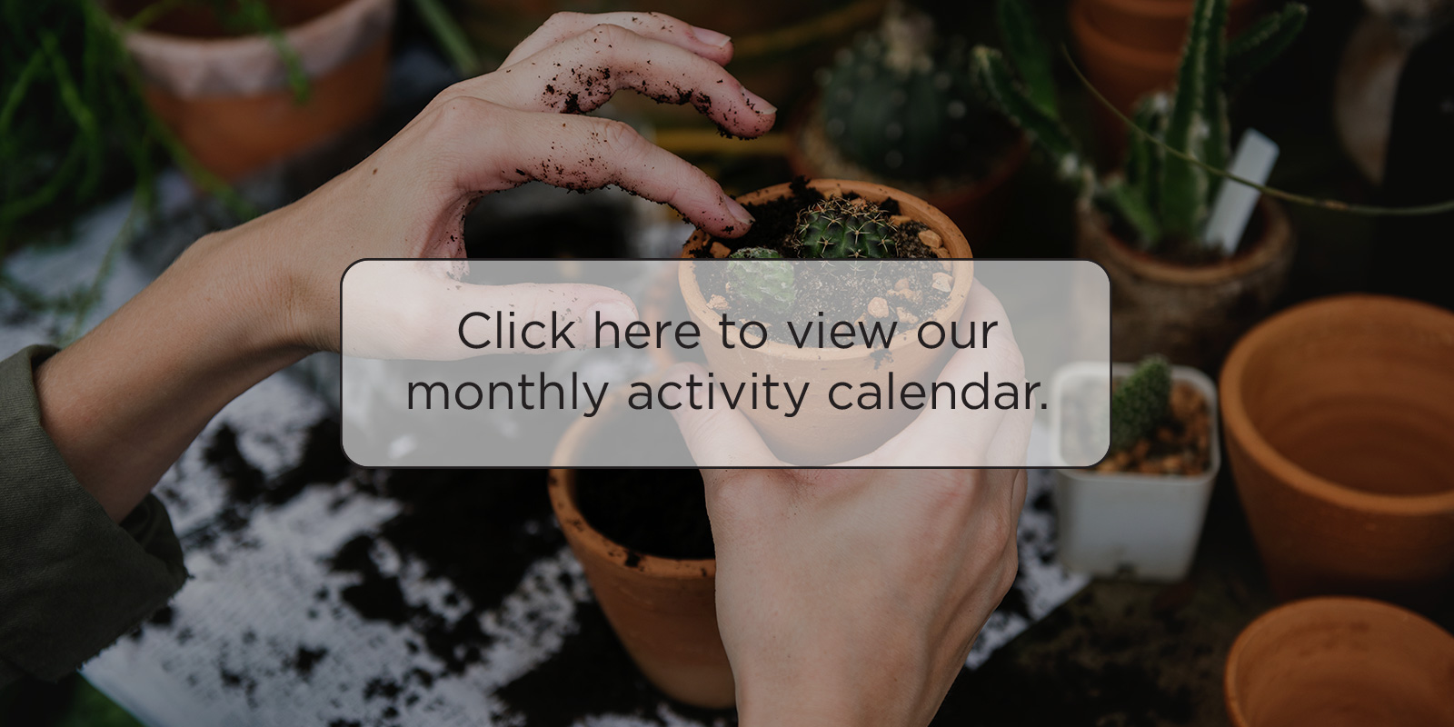 Click here to view our monthly activity calendar button.