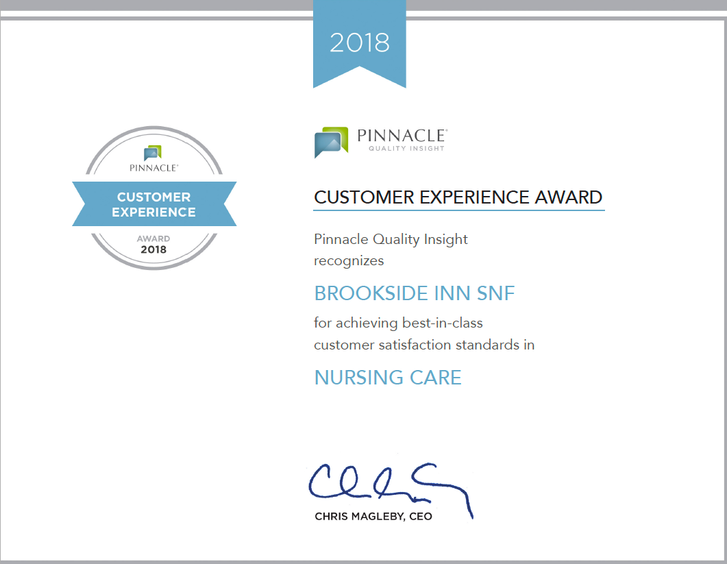 Pinnacle Customer Experience Award 2018 for Nursing Care