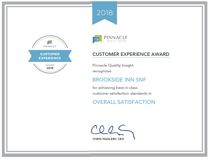 2018 Pinnacle Customer Experience Award 2018