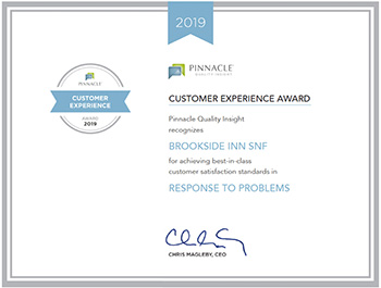 Pinnacle Customer Experience Award 2019 for Response to problems