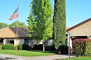 The entrance of the building with large trees and an American Flag out front