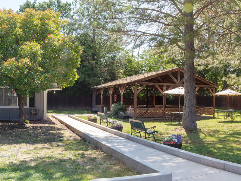 Beautiful outdoor yard with a walking path that leads to a shaded gazebo and two more sitting areas with shade under the large trees.