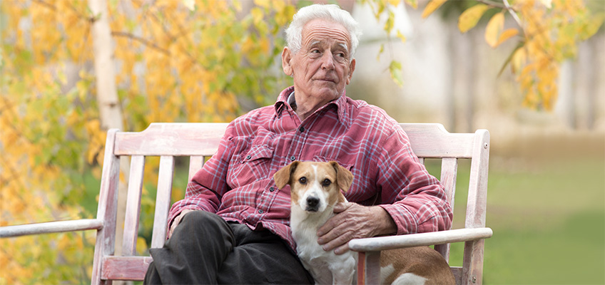 An older man sitting on a bench outside with his dog
