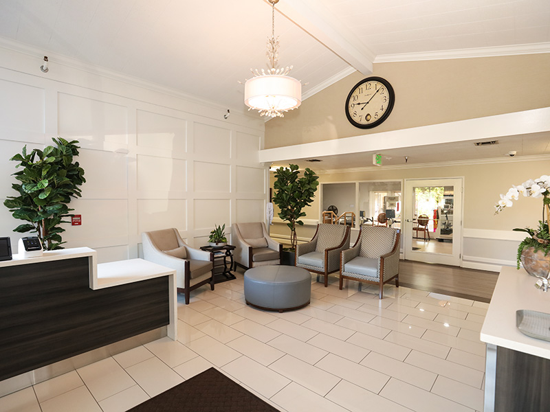 Newly remodeled front lobby with modern furniture and live plants