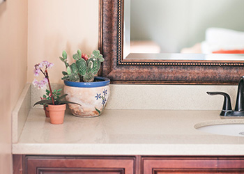bathroom sink with many plants