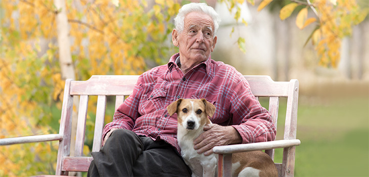 elderly man sitting on a bench with his arm around a dog