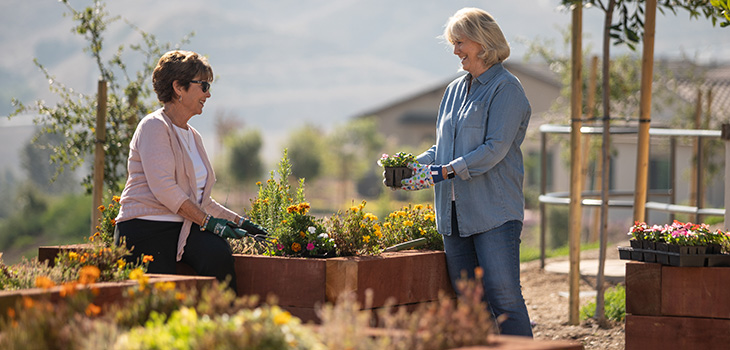 two women planting flowers together
