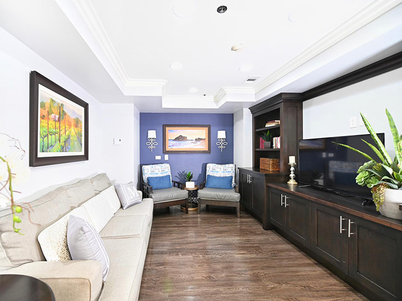 Mclure recreation room, elegantly decorated with modern furniture and electronics