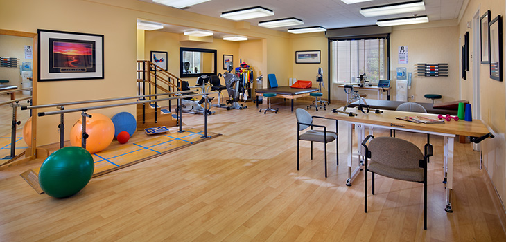 Rehabilitation gym with organized equipment and stations.