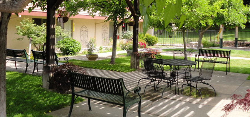 RHF Gold Country outdoor seating area with shady trees and potted plants