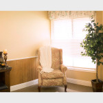 wingback chair with blanket in a sunny corner