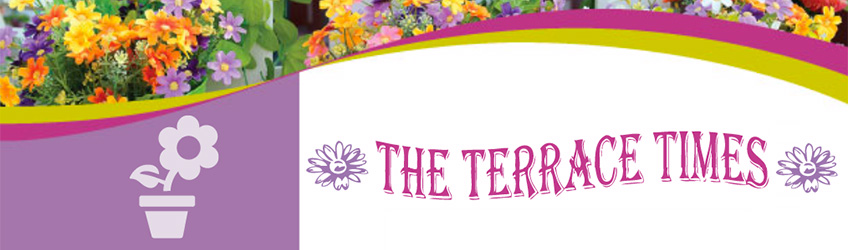 The Terrace Times