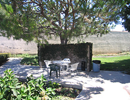 Carbon Creek peaceful outdoor seating area under a mature tree