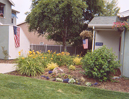 Cardosa Village garden and grass area surrounding the community