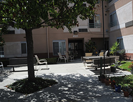 Laurel Park shaded patio area with mature trees