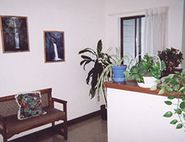 lobby with seating, pictures on the wall and lots of plants on the desk