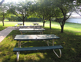 Pilgrim Place picnic area surrounded by grass and trees
