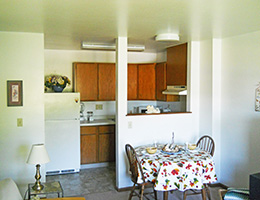 Resident room with kitchen area, dining area and living space
