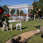 Outside pergola with seating underneath and rose bushes near by.