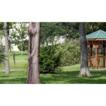 Beautiful outdoor gazebo by the lake among the trees