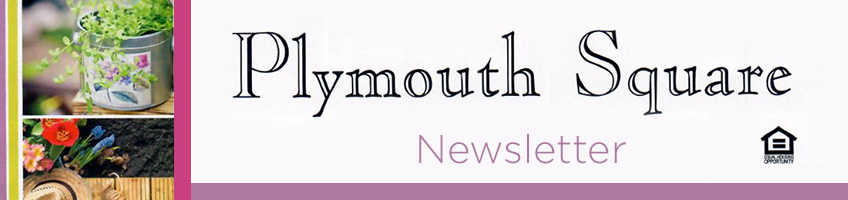 Plymouth Square Newsletter