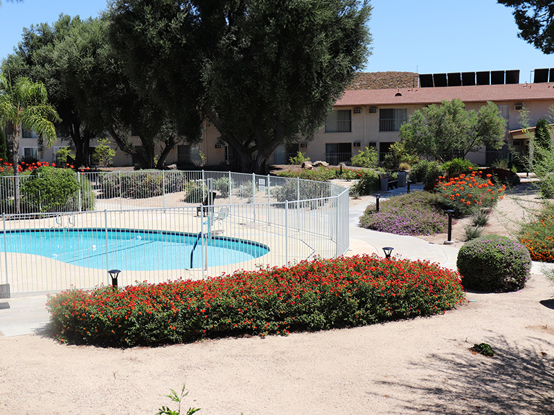 Resident swimming pool surrounded by a garden and walking path.