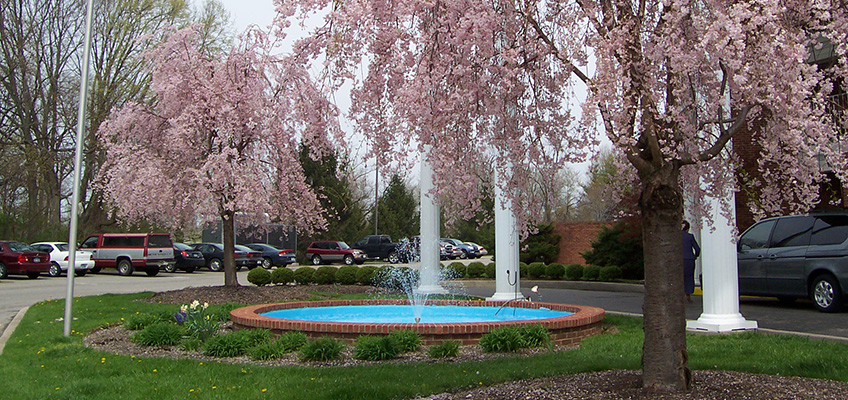 Outdoor front area with flowering trees and a large fountain