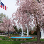Outdoor front area with flowering trees, US flag and a large fountain
