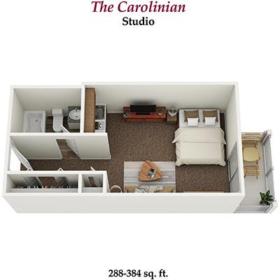 Independent Living Studio