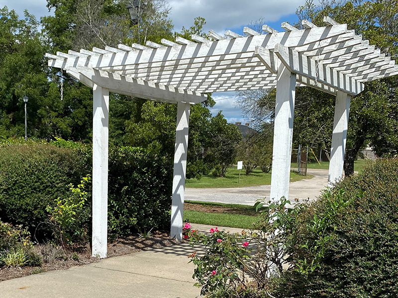 A pergola over a walking path beside manicured gardens.