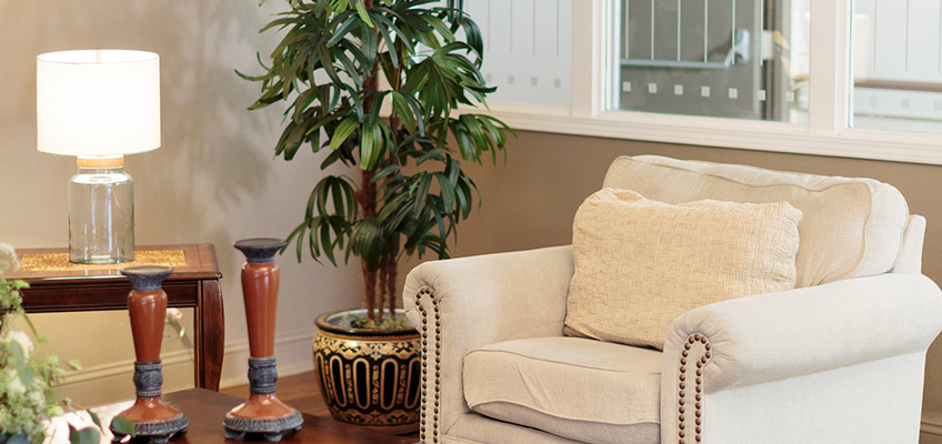 A comfortable chair with a tree beside it along with a table and a lamp with the light on.