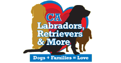California Labradors, Retrievers, and More (Labs and More)